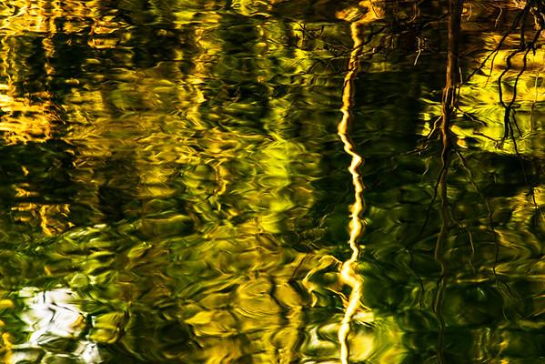 Serpent Water