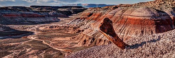Paleontologist's Paradise