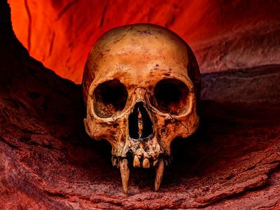 Vampire Skull Cave