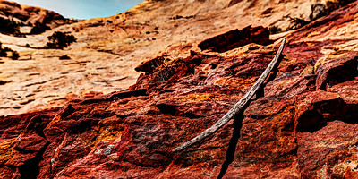 Anasazi Bow