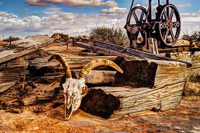 Sentinel Of Dry Territory