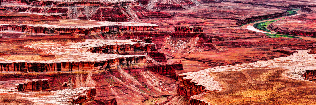 Canyon Cacophony