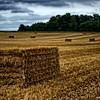 4/365 Hay bale - Artannes-sur-Indre France
