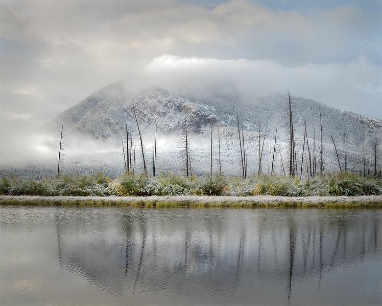 Fresh Snow - Vermilion Lakes, Alberta, Canada