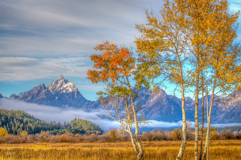 Morning in the Tetons - Wyoming