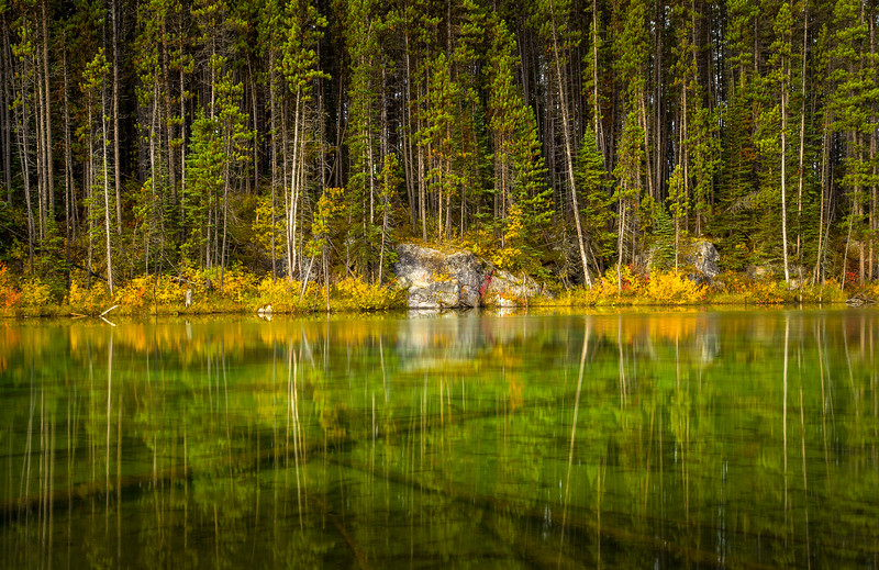 Herbert Lake Reflections - Alberta, Canada