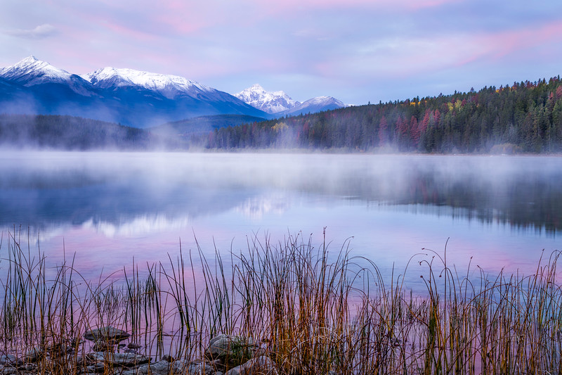 Morning Mist - Patricia Lake, Alberta, Canada