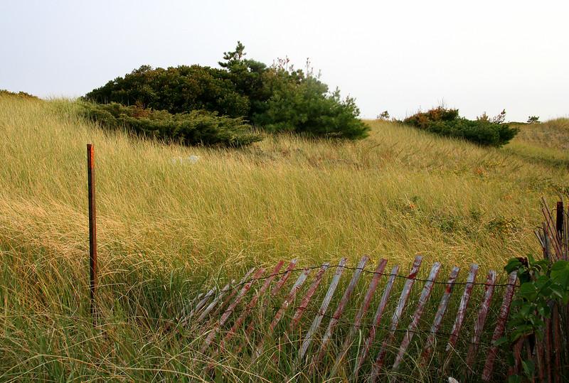 ogunquit dune
