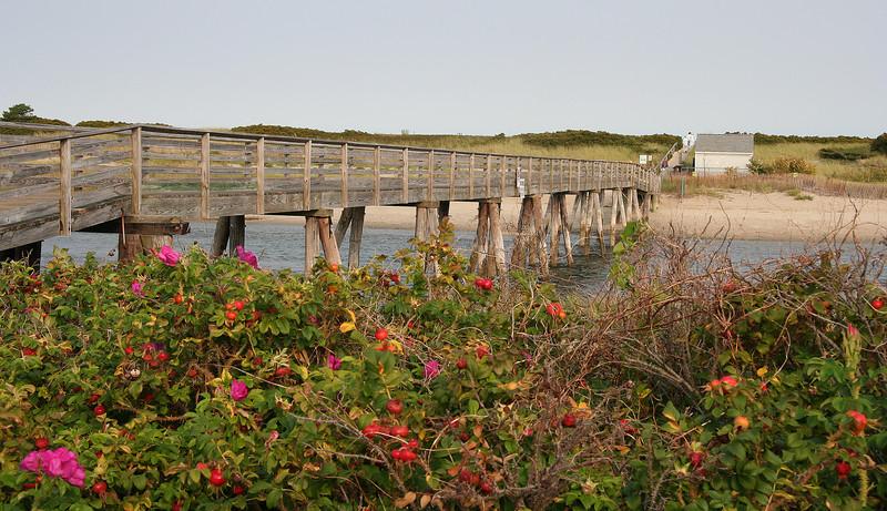 ogunquit footbridge
