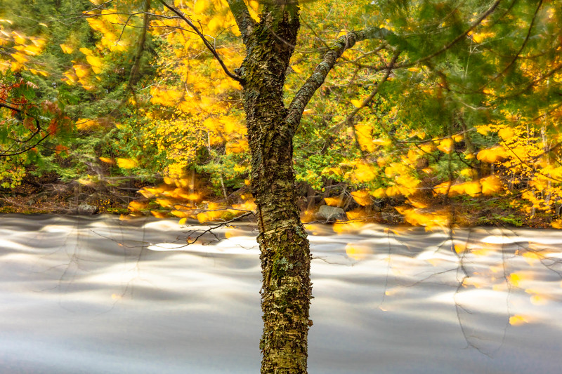 Autumn Wind on the Wolf River