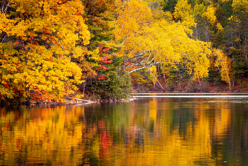 Boot Lake Reflections