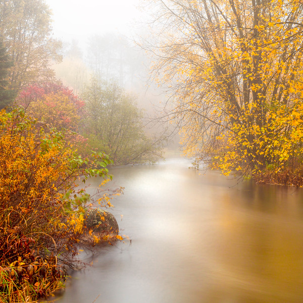 Autumn Fog on The Wolf River