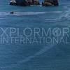 Kayakers Paddling Scorpion Bay
