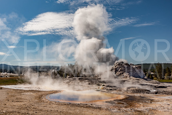 Tortoise Shell Spring and Castle Geyser