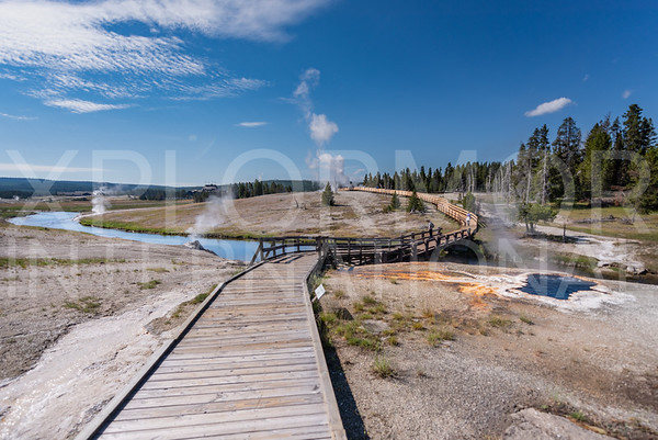 Upper Geyser Basin Trail