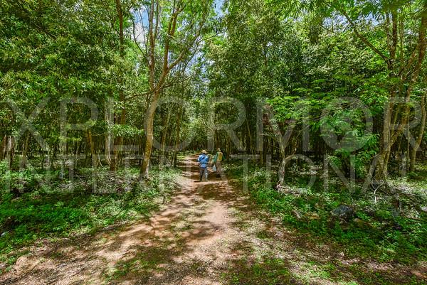 Cienaga de Zapata Trail