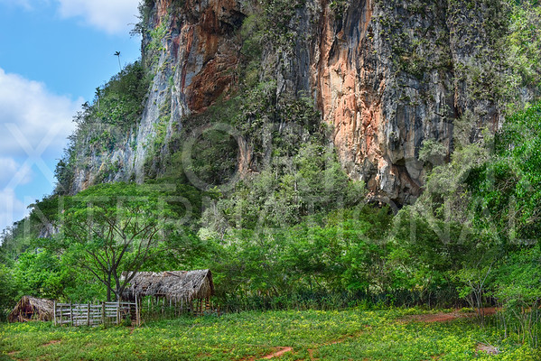 Vinales Valley Scenery