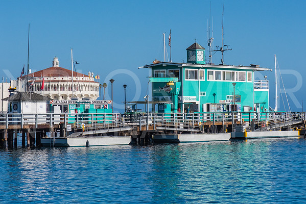 Catalina Green Pier I