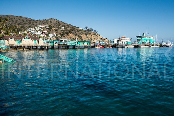 Catalina Green Pier II