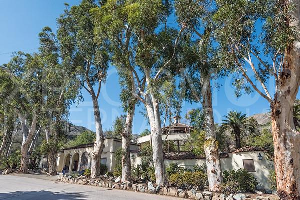 Catalina Bird Park