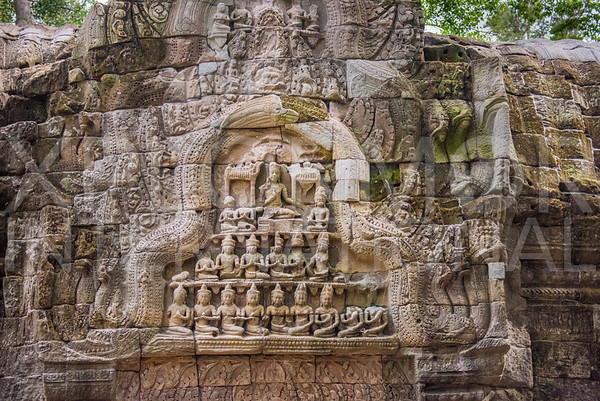 Carvings at Ta Prohm Temple