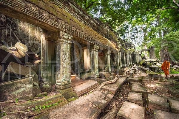 Monk at Ta Prohm Temple