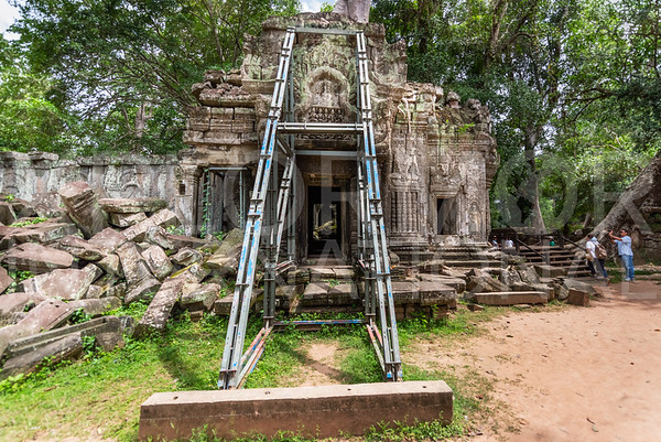 Conservation Efforts at Ta Prohm Temple