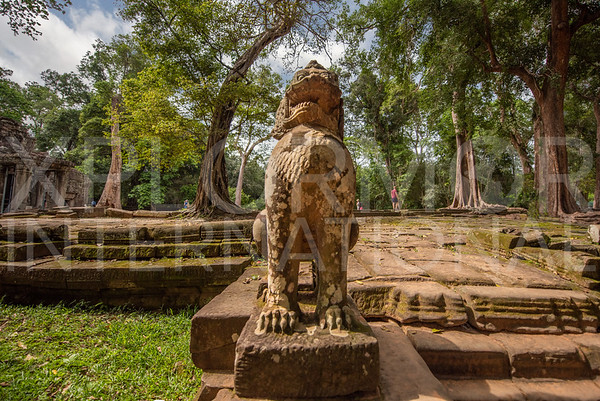 Gaurdian Lion at Ta Prohm Temple