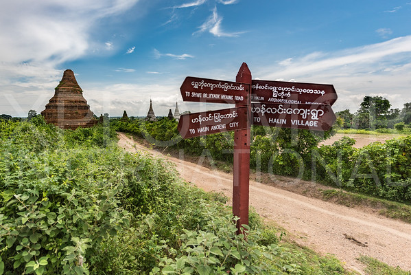 Brick Stupas at Hanlin