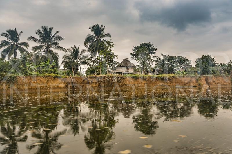 Jungle Hut at the River's Edge