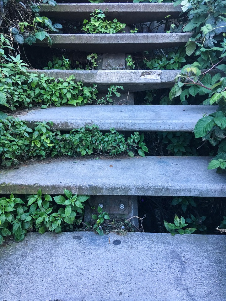 Stairs leading to Coit Tower