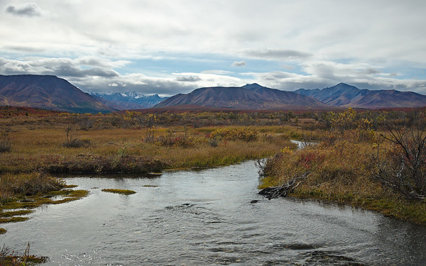 The Savage River