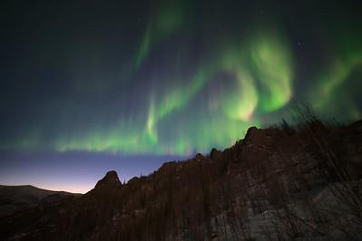 Gorgeous Aurora