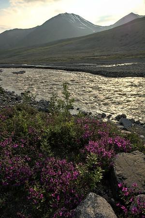 Sun on Phelan Creek