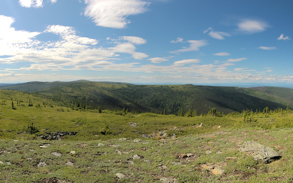 Looking northwest from the top of Murphy Dome.