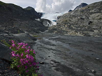 The Worthington Glacier