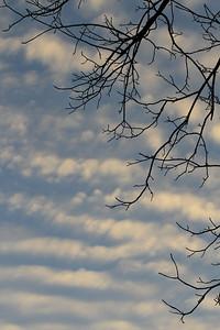 Sky Silhouette 2
