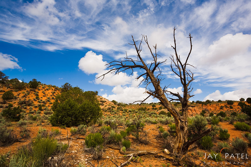 Vermilion Cliffs, Arizona (AZ), USA