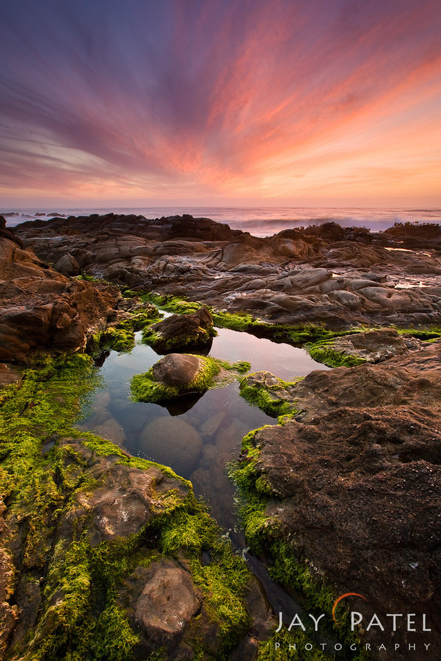 Pebble Beach, Califorina (CA), USA