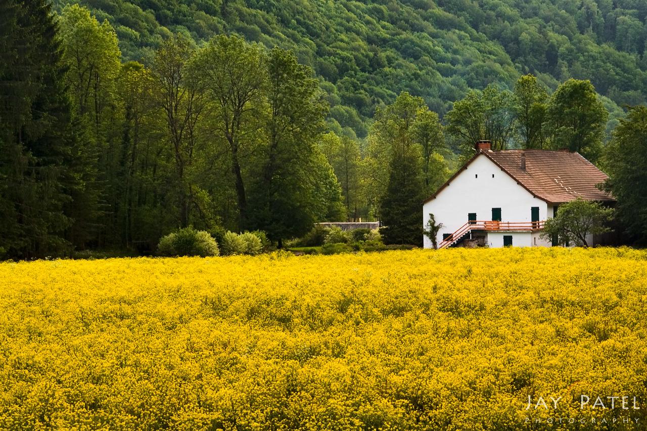 Jura-Burgundy District, France