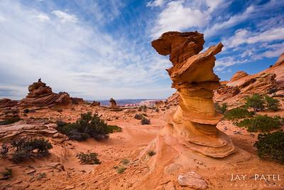 Coyote Buttes, Vermilion Cliffs, Arizona (AZ), USA