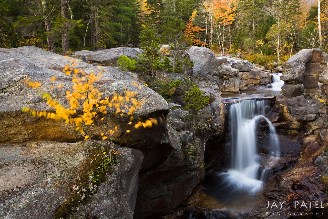 Grafton Notch State Park, Maine (ME), USA
