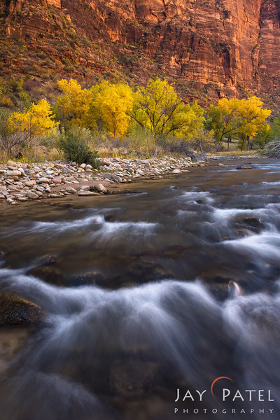 Virgin River, Zion National Park, Utah (UT), USA
