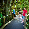 We also visited an amazing private arboretum called the Hawaii Tropical Botanical Garden.
