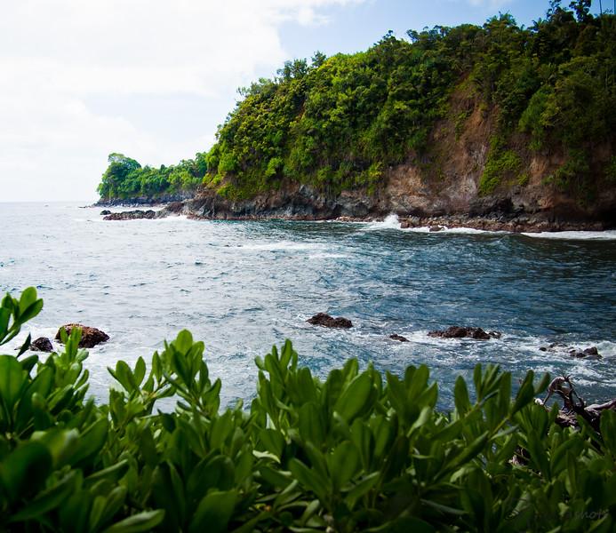 Onomea Bay at the Hawaii Tropical Botanical Garden.