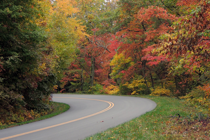 """""""Around The Bend"""" 