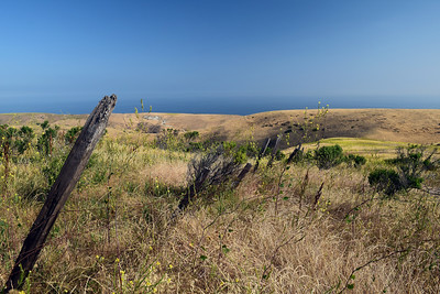 Smugglers Road | Channel Islands National Park
