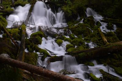 Clearwater Falls | Oregon