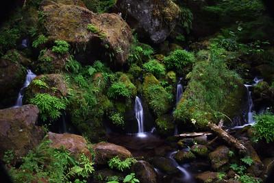 Umpque River Falls | Oregon