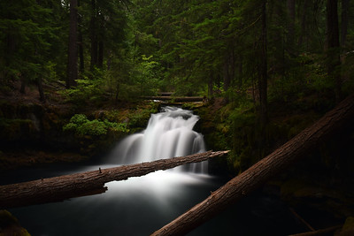 Whitehorse Falls | Oregon